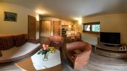 Spoločenská miestnosť s pohodlným rozkladacím gaučom V5